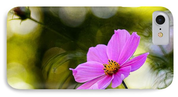 IPhone Case featuring the photograph Beautiful Evening Pink Cosmos Wildflower by Tracie Kaska