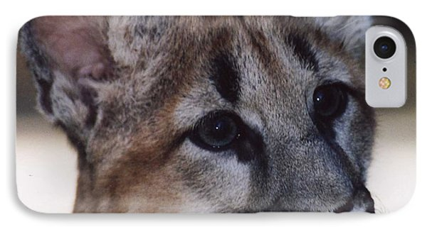 IPhone Case featuring the photograph Beautiful Face-cougar Cub by Myrna Walsh