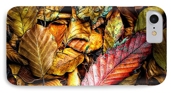 IPhone Case featuring the photograph Beautiful Fall Color by Meirion Matthias