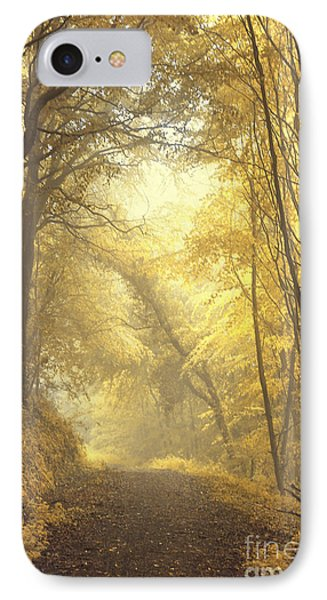 Beautiful Fall IPhone Case by Evelina Kremsdorf