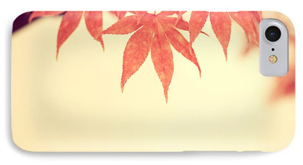 Beautiful Fall Phone Case by Hannes Cmarits