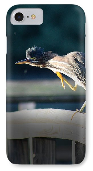 IPhone Case featuring the photograph Beautiful Green Heron by Anita Oakley