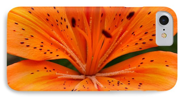 Beautiful Lily Phone Case by Carol Lynch