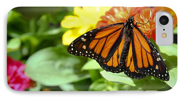 Beautiful Monarch Butterfly IPhone Case by Patrice Zinck