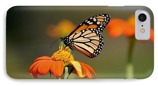 Beautiful Monarch IPhone Case by Living Color Photography Lorraine Lynch