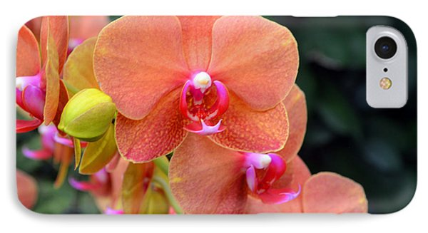 Beautiful Orchids Phone Case by Anne Marie Corbett