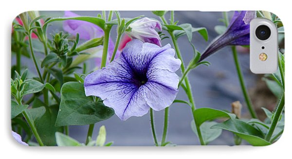 IPhone Case featuring the photograph Beautiful Petunias by Wilma  Birdwell