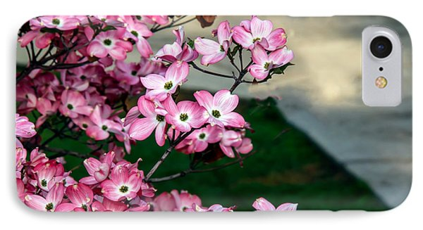 Beautiful Pink Dogwood IPhone Case by Robert Bales
