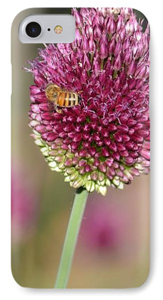 Beautiful Pink Flower With Bee IPhone Case