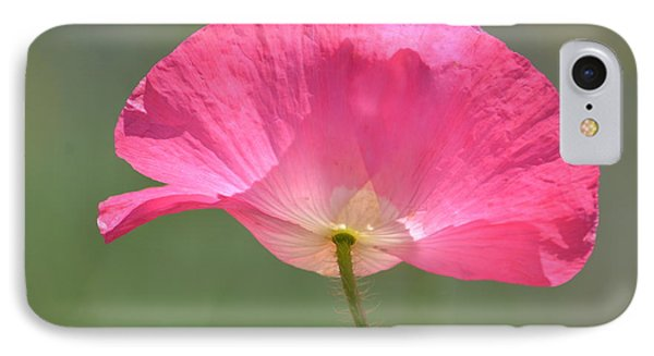 Beautiful Pink Poppy Flower IPhone Case