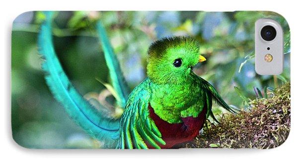Beautiful Quetzal 5 Phone Case by Heiko Koehrer-Wagner