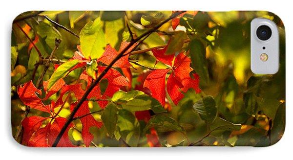 Beautiful Red IPhone Case by Gloria Pasko