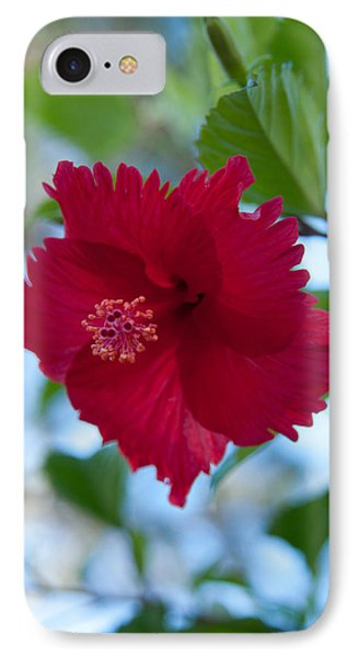IPhone Case featuring the photograph Beautiful Red Hibiscus by John Black