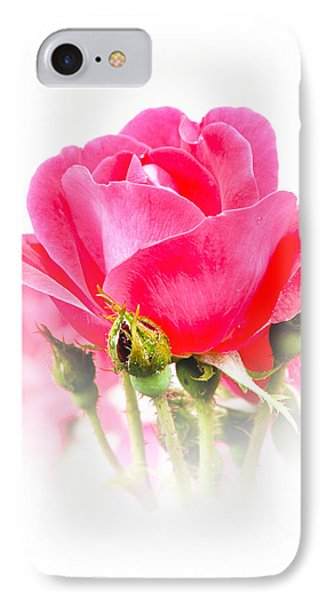 IPhone Case featuring the photograph Beautiful Rose by Anita Oakley
