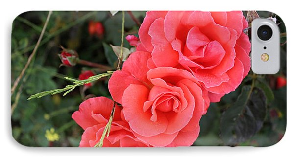 IPhone Case featuring the photograph Beautiful Roses by Cendrine Marrouat