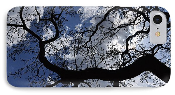Beautiful Sky And Tree IPhone Case