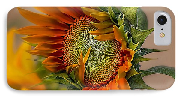 Beautiful Sunflower IPhone Case by John  Kolenberg
