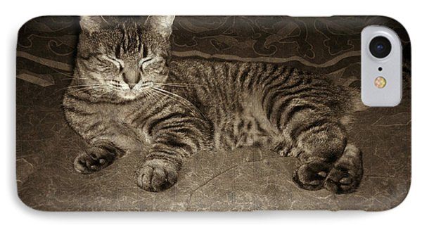 Beautiful Tabby Cat IPhone Case by Absinthe Art By Michelle LeAnn Scott