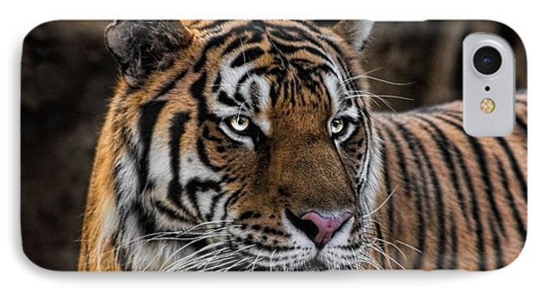 IPhone Case featuring the photograph Beautiful Tiger Photograph by Tracie Kaska