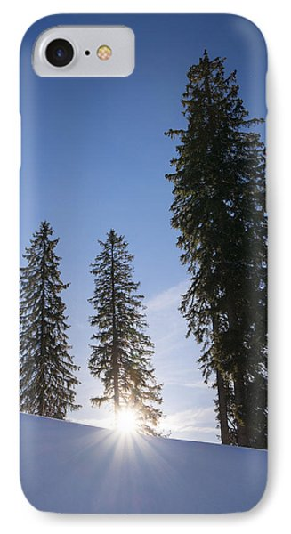 Beautiful Trees On A Sunny Winter Day Phone Case by Matthias Hauser