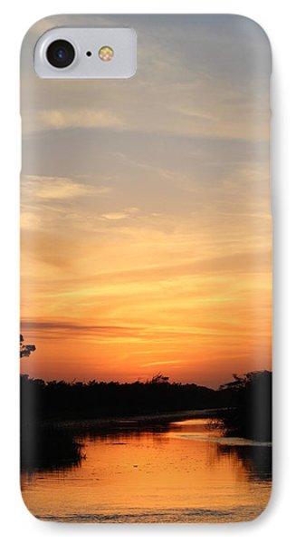 Beautiful View Phone Case by Cynthia Guinn