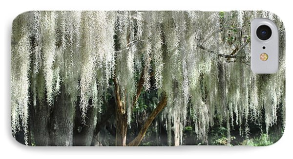 IPhone Case featuring the photograph Beautiful White Spanish Moss Hanging From Trees by Jodi Terracina