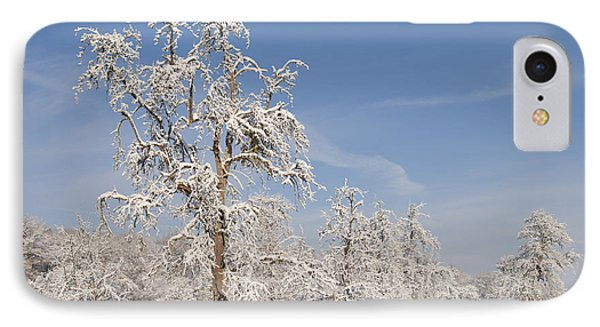 Beautiful Winter Day With Snow Covered Trees And Blue Sky Phone Case by Matthias Hauser