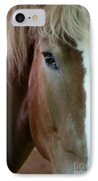 IPhone Case featuring the photograph Beautiful Within Him Was The Spirit - 2 by Linda Shafer