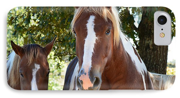 Beauty And Her Best Friend IPhone Case by Barbara Dalton