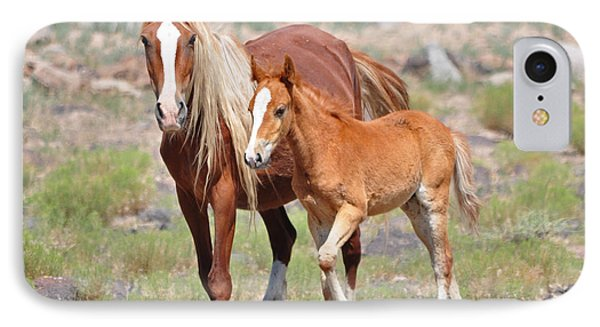 Beauty And Her Foal IPhone Case by Lula Adams