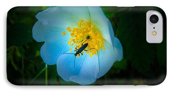 Beauty And The Beetle IPhone Case