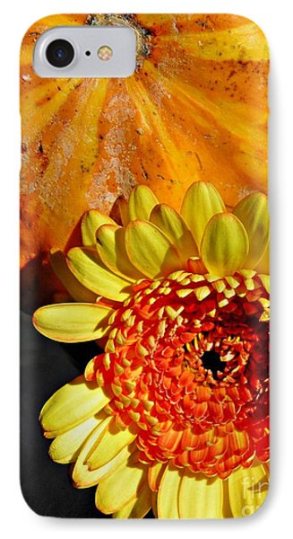 Beauty And The Squash 2 Phone Case by Sarah Loft