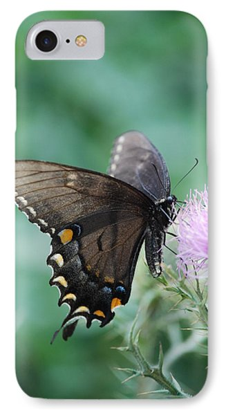 Beauty And Thistle IPhone Case by Eric Liller