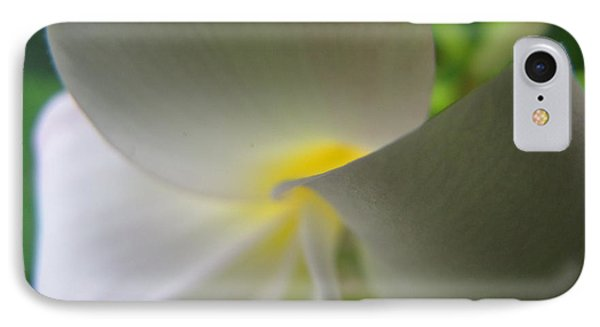 IPhone Case featuring the photograph Beauty by Beth Vincent