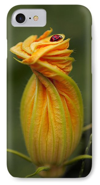 IPhone Case featuring the photograph Beauty by Gouzel -