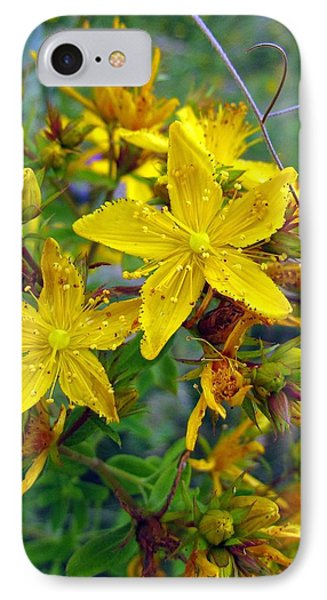 Beauty In A Weed IPhone Case by I'ina Van Lawick