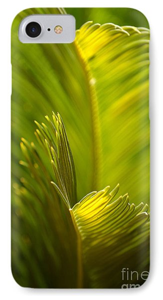 Beauty In The Sunlight IPhone Case by Deb Halloran
