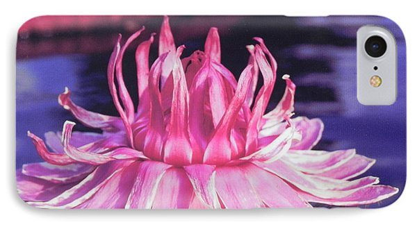 Beauty Of Pink At The Ny Botanical Gardens IPhone Case by Chrisann Ellis