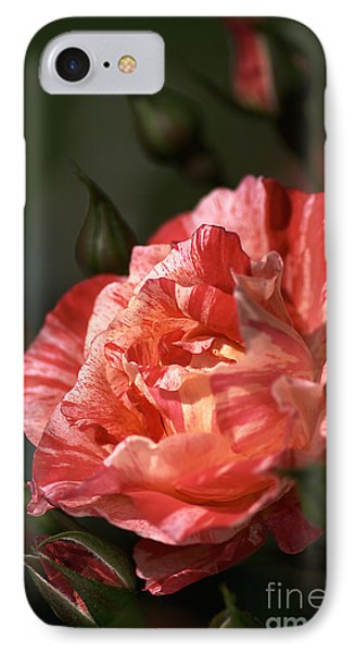 IPhone Case featuring the photograph Beauty Of Rose by Joy Watson