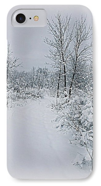 Beauty Of Winter IPhone Case by Kay Novy