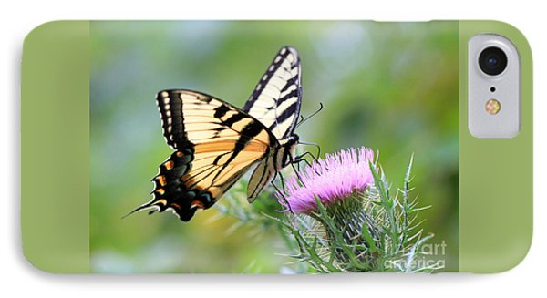 Beauty On Wings Phone Case by Geoff Crego