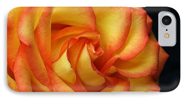IPhone Case featuring the photograph Beauty Unfolds by Judy Whitton