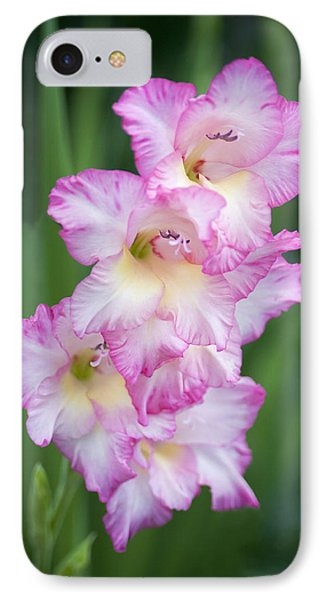Beauty Upon Beauty IPhone Case by Morris  McClung