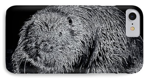 Beaver 1 IPhone Case by Todd Hostetter
