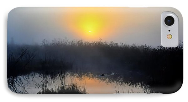 Beaver At Beaver Dam In Morning Phone Case by Dan Friend