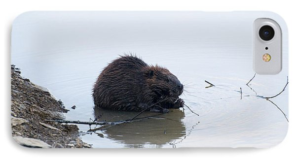Beaver In The Shallows IPhone 7 Case by Chris Flees