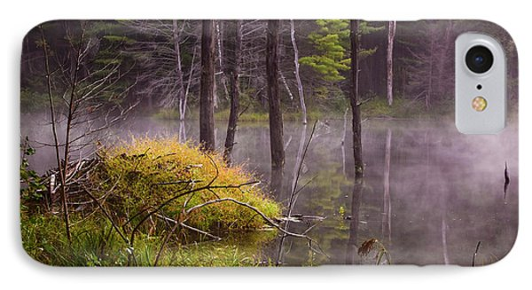 IPhone Case featuring the photograph Beaver Lodge by Tom Singleton