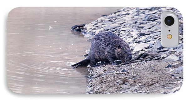 Beaver On Dry Land IPhone 7 Case by Chris Flees