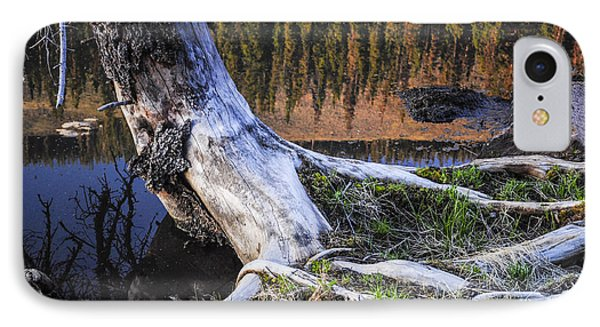 Beaver Pond Reflection 2 IPhone Case by Aaron Spong