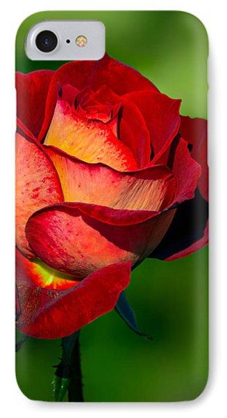 Becoming A Rose Phone Case by Tomasz Dziubinski